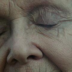 Old Rose closes her eyes and vividly remembers <a href=