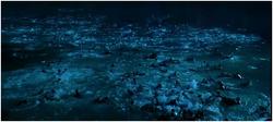 1500 naufragés