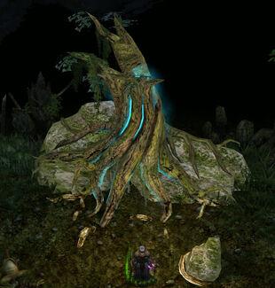 Aestivus-tree