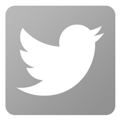 File:Icon-Twitter-inactive.png