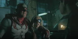 Hawk, Dove and Robin