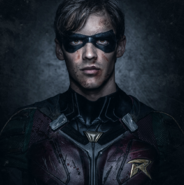 Robin close-up promotional image