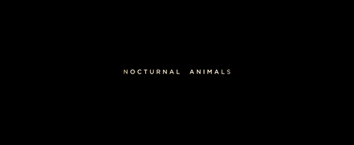 Nocturnal Animals closing