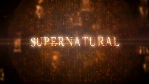 Supernatural season 8 non-animated