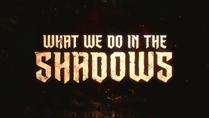 What We Do in the Shadows (TV series)
