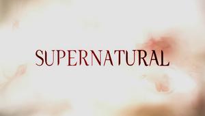 Supernatural season 5 non-animated