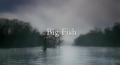 Big Fish (film)
