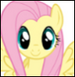 Fluttershy colored