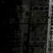 Whistler's Forest Thumbnail