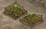 Vegetable Garden Level 3 Full
