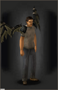 Wasteland Wings Reborn equipped male