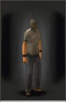 Ski Mask Green equipped male