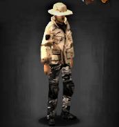 Desert cookie survivor