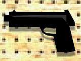 Glock 17 (TLS1)