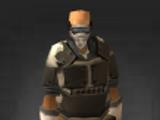 Assault Mask