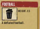 Tlsuc football