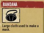Bandana 1