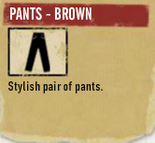 Tlsuc pants - brown