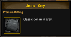 TLSDZ Jeans - Grey