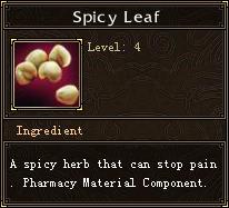 Spicy Leaf