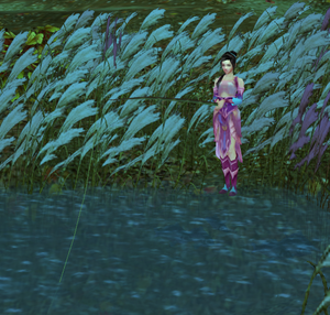 A player fishing (edited)