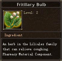 Fritillary Bulb