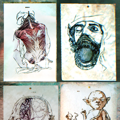 Анатомические атласы
