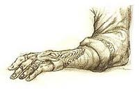 DF декор руки концепт