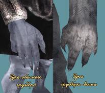 Руки грубберов