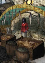 Женщина-долмари, торгуяющая в магическом гетто