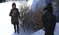 Эйприл и Ворон у темницы