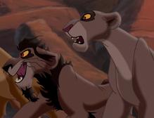 Nuka i lwica jego typu