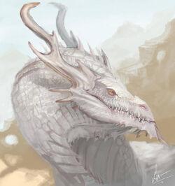 Albino dragon by lauuw w d6oz8gy-pre