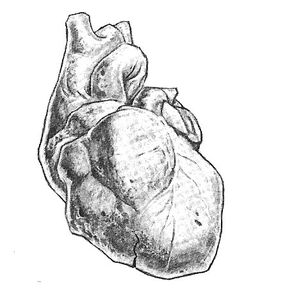 Heartofstone
