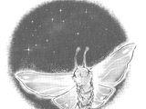 Magical Moth