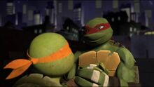 Tmnt raph and mikey by diamondt810-d6wenjj
