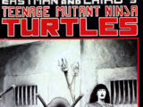 Teenage Mutant Ninja Turtles nr 17 (Mirage)