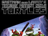 Teenage Mutant Ninja Turtles nr 16 (Mirage)