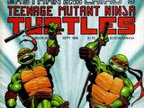 Teenage Mutant Ninja Turtles nr 25 (Mirage)