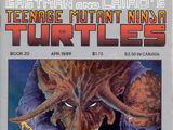 Teenage Mutant Ninja Turtles nr 20 (Mirage)