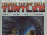 Teenage Mutant Ninja Turtles nr 19 (Mirage)