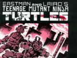 Teenage Mutant Ninja Turtles nr 1 (Mirage)