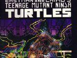 Teenage Mutant Ninja Turtles nr 9 (Mirage)