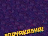Booyakasha (catchphrase)