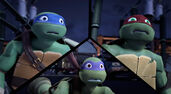 Raph-Leo-And-Donnie-tmnt-2012-79