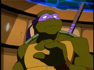 2500574-turtle266