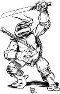 2509342-turtle768