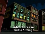 Adventures in Turtle Sitting