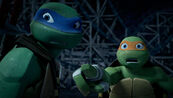 Mikey-and-Leo-26-TMNT