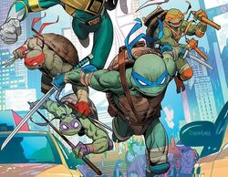 Turtles mmpr